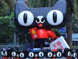 入驻天猫服务大类旗舰店:教育培训,摄影/摄影服务,网...